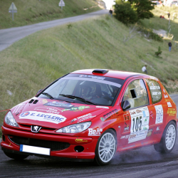 Lunette arrière Makrolon Peugeot 206